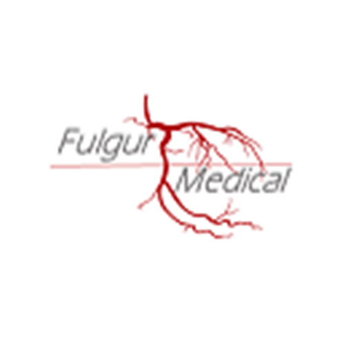 Fulgur Medical